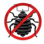Bed Bug Powder Spray Reviews